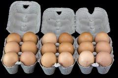 浅褐色的鸡蛋其中一个和六在纸板箱的 免版税库存照片