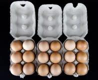 浅褐色的鸡蛋其中一个和六在纸板箱的 免版税库存图片