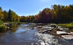 浅连续瀑布标示用在秋天aftermoon的树 免版税库存照片