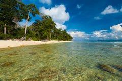 浅透明的水通配原始海滩 免版税库存照片