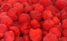 浅重点的莓 库存图片