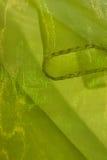 浅绿色的发光的布料 免版税库存照片