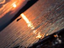 浅DOF :在河多瑙河的美好的日落 免版税库存图片