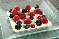 浆果变化的奶油混合 库存图片