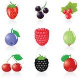 浆果图标集 库存图片