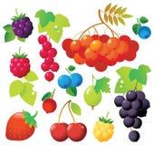浆果图标 图库摄影
