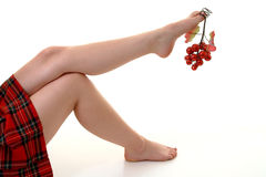 浆果圣诞节 免版税库存图片