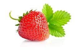 浆果新鲜的红色草莓甜点 库存照片