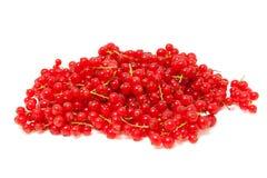浆果无核小葡萄干堆红色 免版税库存照片