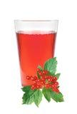 浆果无核小葡萄干新鲜的玻璃汁 免版税库存照片