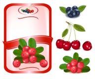 浆果标记红色向量 免版税库存图片