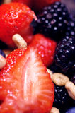 浆果森林果子 免版税库存图片