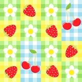 浆果模式 库存图片