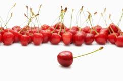 浆果樱桃 免版税库存图片