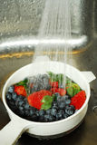 浆果洗涤 免版税库存图片