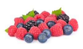 浆果混合从 免版税图库摄影