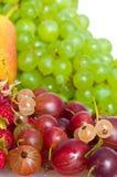 浆果混合 库存照片