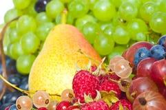 浆果混合 免版税库存照片
