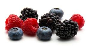 浆果的混合 库存照片