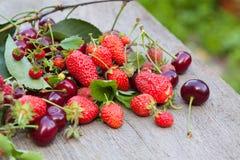 浆果的混合 库存图片