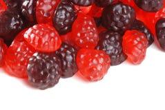 浆果糖果查出的果子胶粘 免版税库存照片