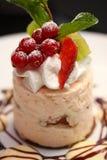 浆果结块被鞭打的奶油沙司甜点 库存图片