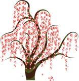 浆果结构树 免版税图库摄影