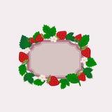 浆果花框架红色草莓向量白色 免版税库存图片