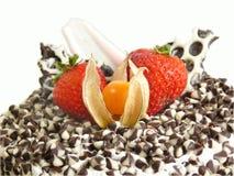 浆果蛋糕切削巧克力 库存照片