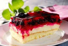 浆果蛋糕 免版税库存图片