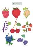 浆果被设置的得出的现有量例证 图库摄影