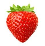 浆果详述本质红色草莓 免版税库存照片