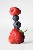 浆果 免版税图库摄影