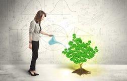 浇灌一棵生长绿色美元的符号树的女商人 免版税库存图片