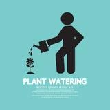 浇灌与喷壶的植物 免版税库存图片