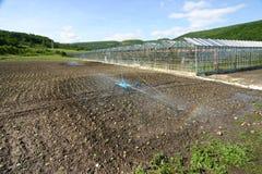浇灌农田的灌溉系统 库存图片