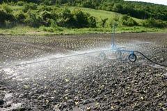 浇灌农田的灌溉系统 图库摄影