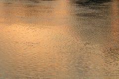 浇灌反射河表面行动美好在日落natur 库存照片