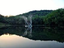浇灌在一个池塘的飞溅在小山旁边 免版税库存照片
