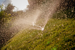 浇灌在夏天的庭院 免版税库存照片