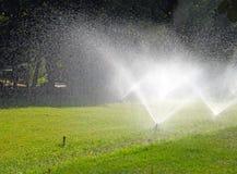 浇灌在庭院里的喷水隆头 库存照片