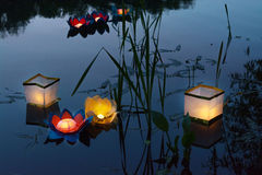 浇灌在湖的灼烧的黄色灯笼在高草中 图库摄影