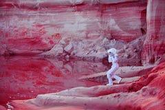 浇灌在火星,疯狂的桃红色行星,与的图象 库存图片