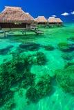 浇灌在热带礁石的别墅,最佳的海岛假日 库存图片