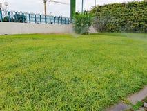 浇灌在绿草的喷水隆头 免版税图库摄影