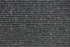 浇灌在老砖灰色墙壁背景的秋天 库存图片