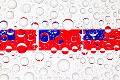 浇灌在萨摩亚的玻璃和旗子的下落 免版税图库摄影