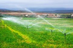 浇灌在领域的农业喷水隆头, 免版税库存照片