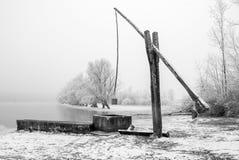 浇灌在冻牧场地的牛 库存图片