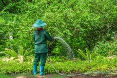 浇灌庭院的花匠 免版税库存照片